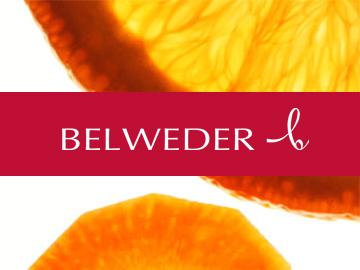 belweder_logo2