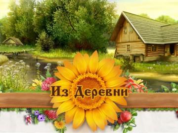 der_logo2